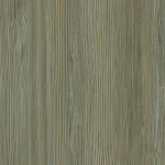 WF445 - Sahalie Pine