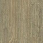 WF447 - Toasted Oak